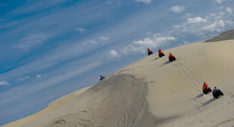 모래 언덕 모험 투어(Sand Dune Adventures)