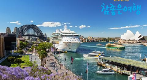 시드니의 꽃 자카란다(Jacarandas). View of a busy Circular Quay and Sydney harbour