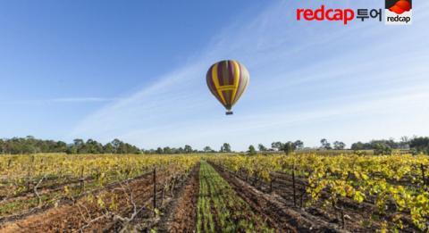 Ballooning in the Hunter valley