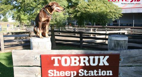 Tobruk Farm